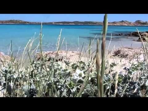 Video gita in barca nell'arcipelago della Maddalena