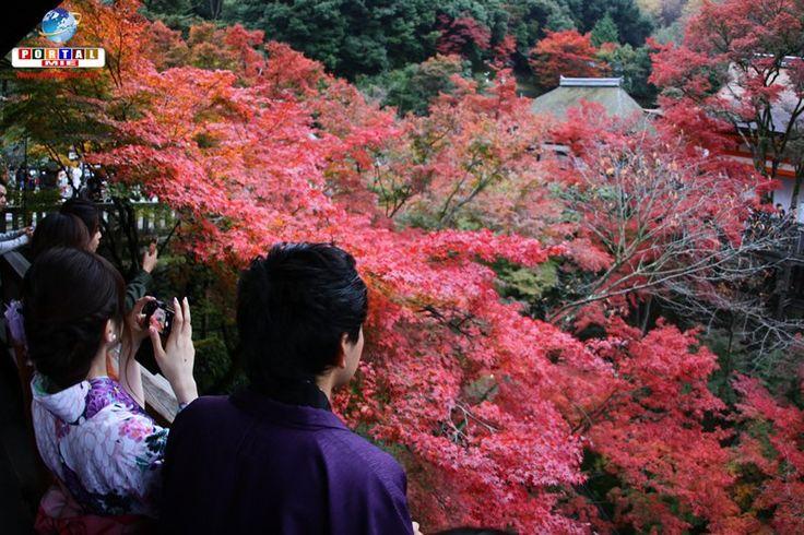 Outono no Kiyomizu-dera: passeio em um dos pontos turísticos mais visitados de Quioto