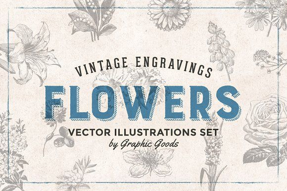 Flowers Engravings by Graphic Goods on @creativemarket