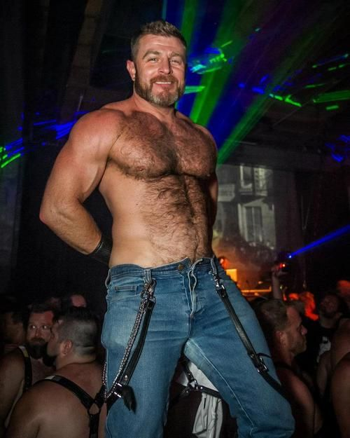 free hairy gay blogs