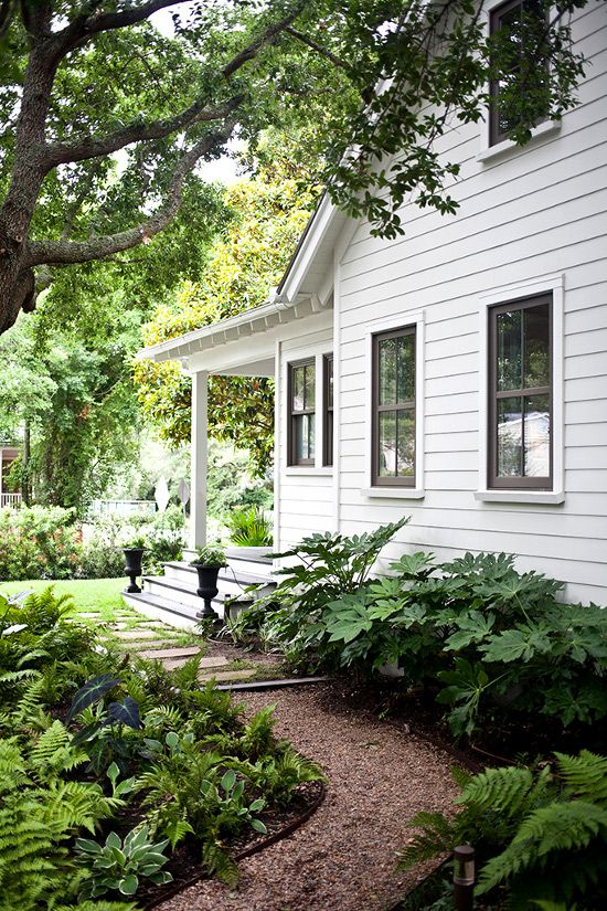 A wonderful example of a shady walkway along the side of the house from the front yard to the back. Beautiful wide- leafed, shade-loving plants that have a very neat growing pattern. Think hosta...never takes over the garden, always beautifully round.