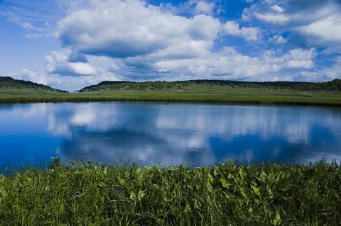 Uryunuma marsh 雨竜沼湿原