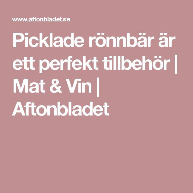 Picklade rönnbär är ett perfekt tillbehör   Mat & Vin   Aftonbladet