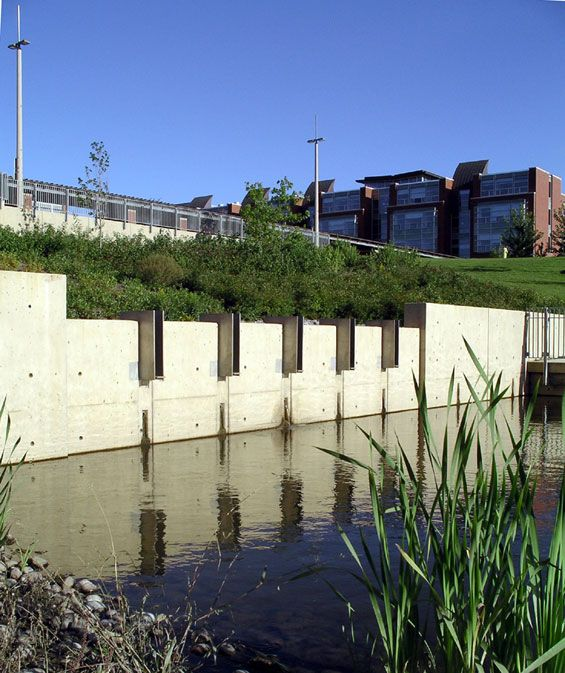 47 best green infrastructure images on pinterest for Institute of landscape architects