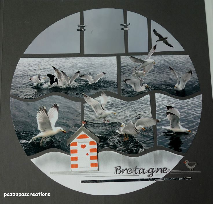 pazzapascreations- Mouettes en Bretagne