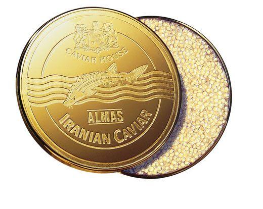most expensive foods almas caviar | Iranian Almas caviar, world's most expensive caviar