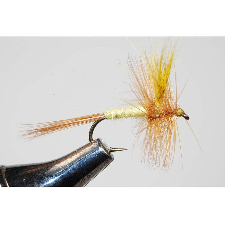 Best 25 fishing equipment ideas on pinterest fishing for Discount fly fishing gear