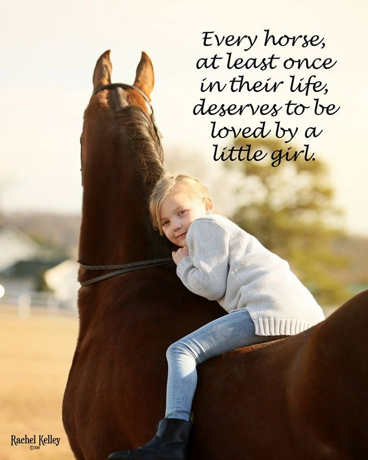 Every horse at least once in their lifetime deserves to be loved by a little girl! (Hey, little boys, too!)