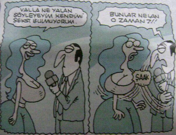 Karikatür seksi