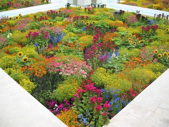 Indian Garden, Hamilton Gardens