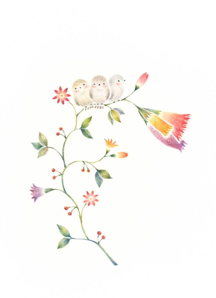 """Little Three Birds on Flowers"" −RiLi, picture book, illustration, design ___ ""三匹の小鳥と草花"" −リリ, 絵本, イラスト, デザイン ...... #bird  #flower #鳥 #花"
