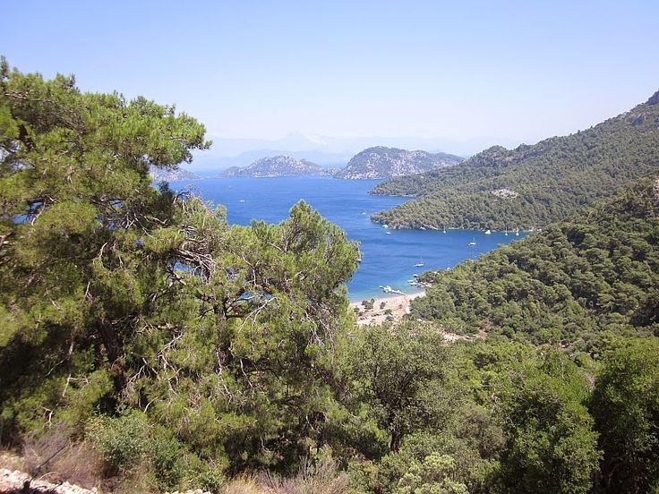 Sarsala Koyu, Türkiye'nin en güzel plajlarından birine sahip, Dalaman'a 15 km mesafededir. Ulaşım imkanlarının kolaylaştığı koy, ziyaretçilerine adeta cennetten bir köşe olduğunu haykırıyor. Bu muhteşem doğa harikasına hayran kalacaksınız.  #Maximiles #Turkey #Türkiye #deniz #plaj #denizmanzarası #gezilecekyerler #gidilecekyerler #koylar #plajlar #doğa #doğamanzarası #doğamanzaraları