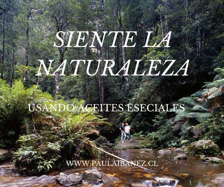La naturaleza en una botella