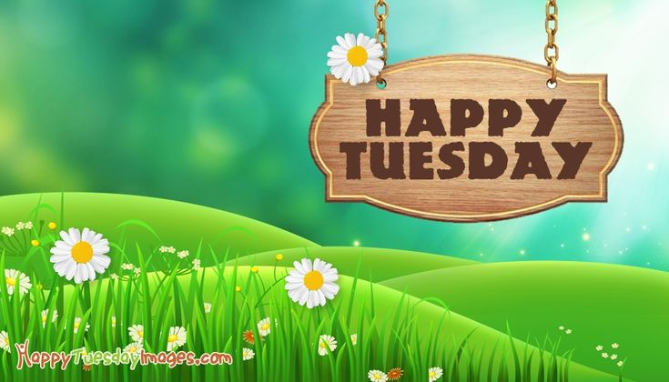 Happy Tuesday Images, Quotes Pictures For Free Download
