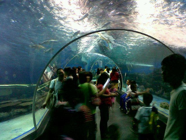 Manila Ocean Park i Maynila, City of Manila