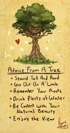 Tree Pose  Theme Roots Grounding Quotes