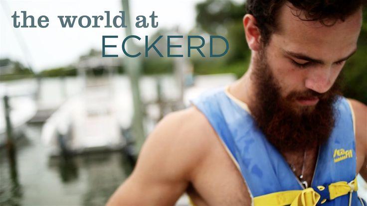 Eckerd College - my new dream college!