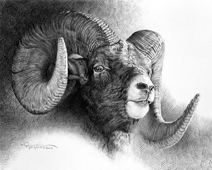 dustin van artist | Drawings — The Art of Dustin Van Wechel