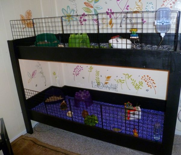 This is our new furniture style cage two levels not for Diy guinea pig cage from dresser