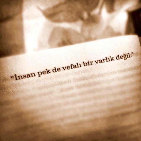 İnsan pek de vefalı bir varlık değil.   - Ahmet Ümit / İstanbul Hatırası