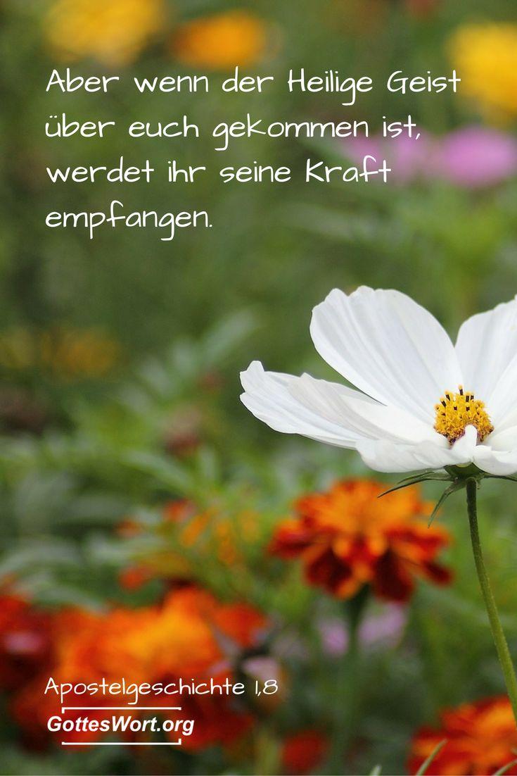 Die heilige Geistestaufe erklärt:  http://www.gottes-wort.com/geistestaufe.html   #gotteswort