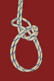 Tie a bowline on a bight step by step using animated video. Watch how to tie a bowline on a bight and many more fishing knots now. visit here:- http://www.marinews.com/knots/rope-knots/household/loops-nooses/how-to-tie-a-bowline-on-a-bight/1/8/7/320/