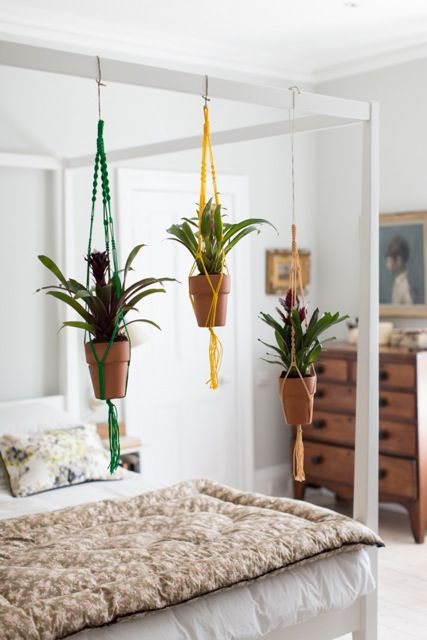 From Ham Amp High Hanging Plants Above Bed Build Frame