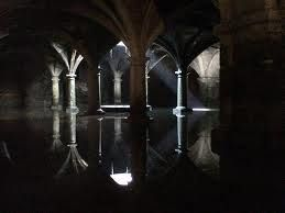 I think the cellar has flooded again!