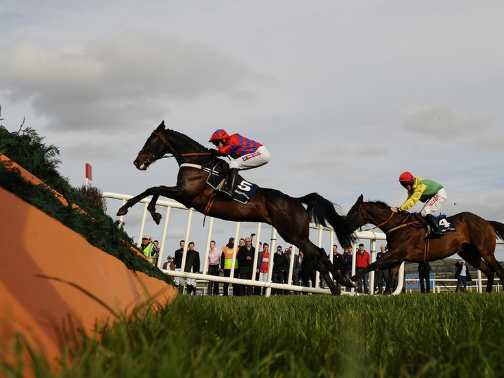 Sprinter Sacre comes into the last ahead of Sizing Europe, at the Punchestown Festival in Ireland.
