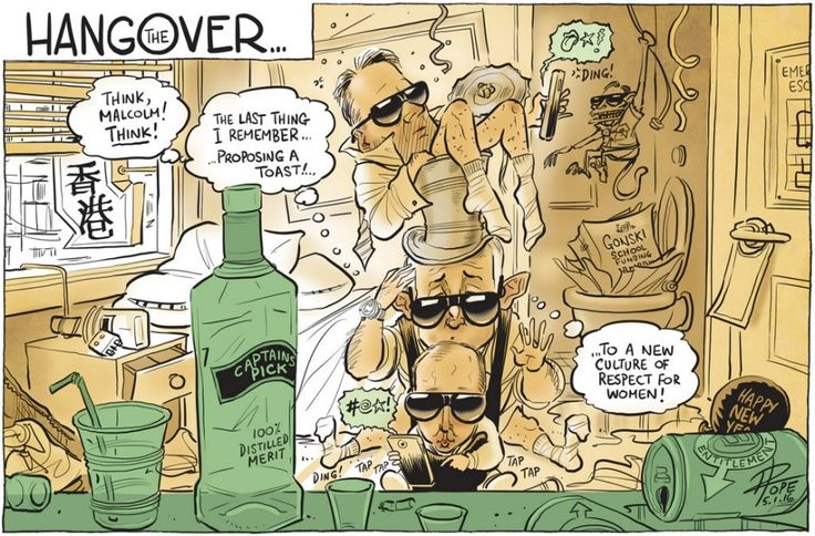Turnbull Government is imploding. Cartoon by David Pope.