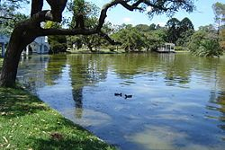 This park is hermoso, and not from from our apartment. We like to cirumnaviget the lake. Parque 3 de Febrero - Wikipedia, la enciclopedia libre