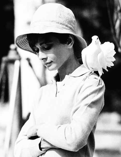 Audrey HepburnTerry O'Neil, The Roads, Audrey Hepburn, Terry Oneill, Audreyhepburn, People, Nature Beautiful, Photography, Terry O' Neil