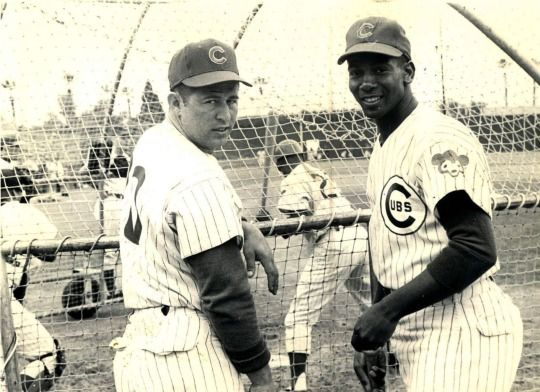 Ron Santo and Ernie Banks of the Chicago Cubs during spring training (1964)