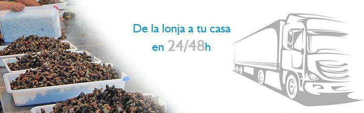 www.elmejorpescado.net te pone el pescasdo directamente de la lonjas gallegas a tu casa