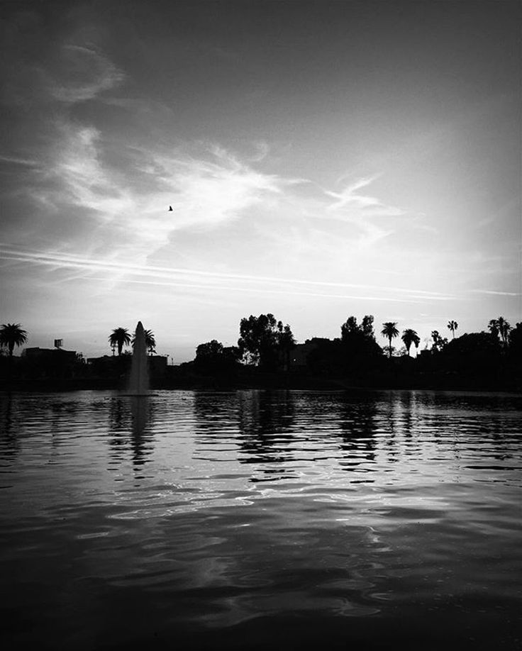 Taking A moment of inner peace in Los Angeles visit MacArthur Park at sunset. #dtla #mkmphoto2 #blackandwhite #photography #photo #creative #calm #beautiful #photooftheday #instagramers#instagrammers #instamood #street #view #architecture #city #citylife #view #bigcity #vsco #vscocam #photogrid in #blackandwhite #photography in phlow