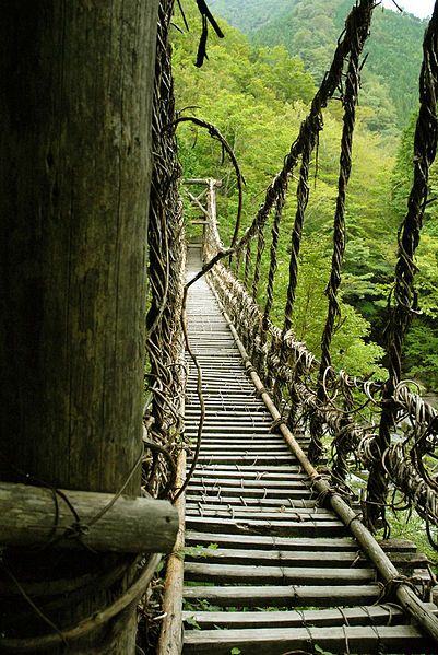 A vine bridge in Iya Valley, Tokushima, Japan   ..rh
