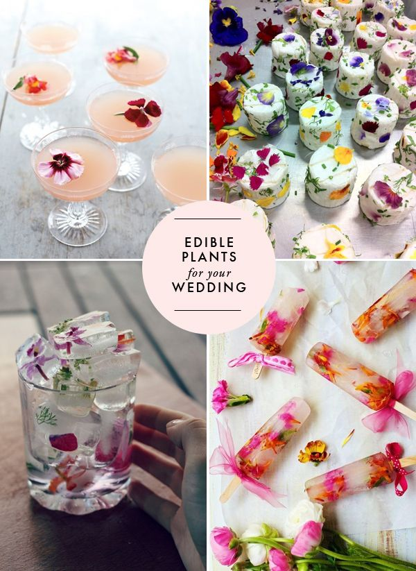 Summer Wedding Ideas - Love the ice cube idea! Edible flowers for your wedding | Brooklyn Bride - Modern Wedding Blog