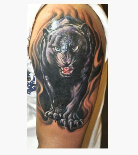 Best 25 panther tattoo meaning ideas on pinterest for Panther tiger tattoo