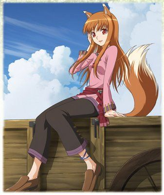 http://images2.wikia.nocookie.net/__cb20120213085411/spiceandwolf/images/5/51/Holo_Infobox.jpg