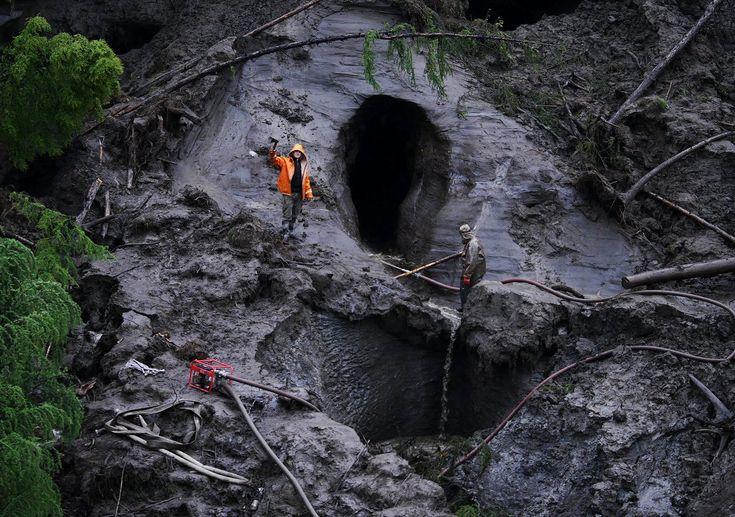 3.02.2018 г. Власти Якутии, где по оценке экспертов ежегодно добывается примерно 100 тонн бивней мамонта, в том числе до 30 тонн – незаконно, намерены вывести отрасль из тени. По словам министра ин…