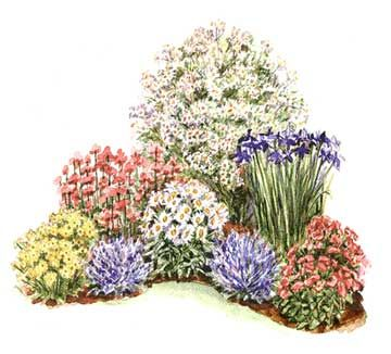 Small garden plans and ideas for Easy maintenance perennials