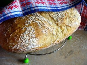 Хлеб без замеса «Проще не бывает» Дрожжи (прессованные) — 5-10 г     Вода — 365 мл     Мука пшеничная — 500 г     Соль — 1,5 ч. л.