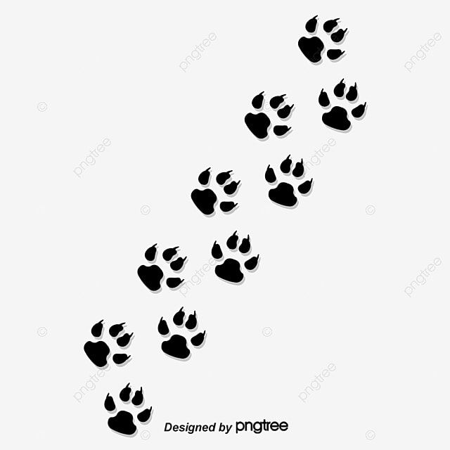 Creative Paw Prints Paw Clipart Animal Paw Prints Paw Png Transparent Clipart Image And Psd File For Free Download Paw Print Prints Paw