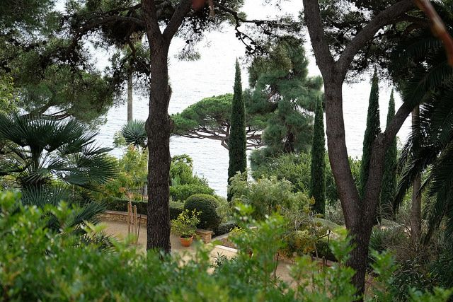 THE BOTANICAL GARDEN OF THE COSTA BRAVA