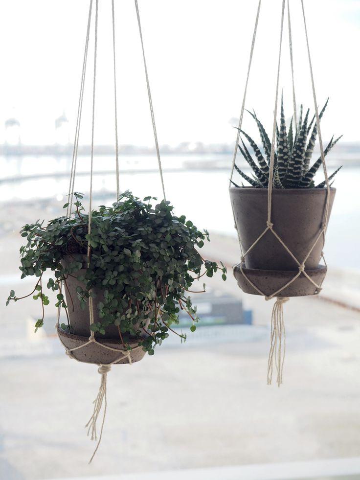 Det er efterhånden længe siden, jeg først spottede et billede af de fineste, flettede hængeplanter på Pinterest. Da gang besluttede jeg mig for, at det måtte(!) jeg simpelthen forsøge at genskabe t…