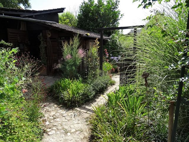Le Jardin De Brigitte Alsace Garden Plants Yard