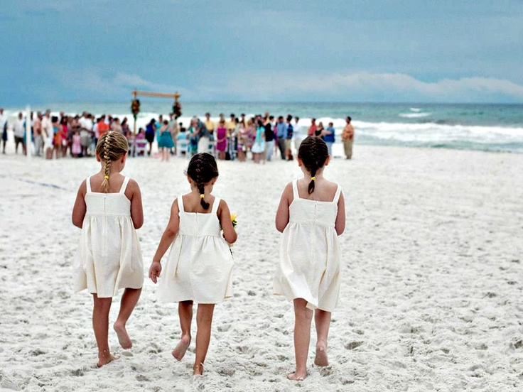 1000 Images About Beach Wedding Venues On Pinterest