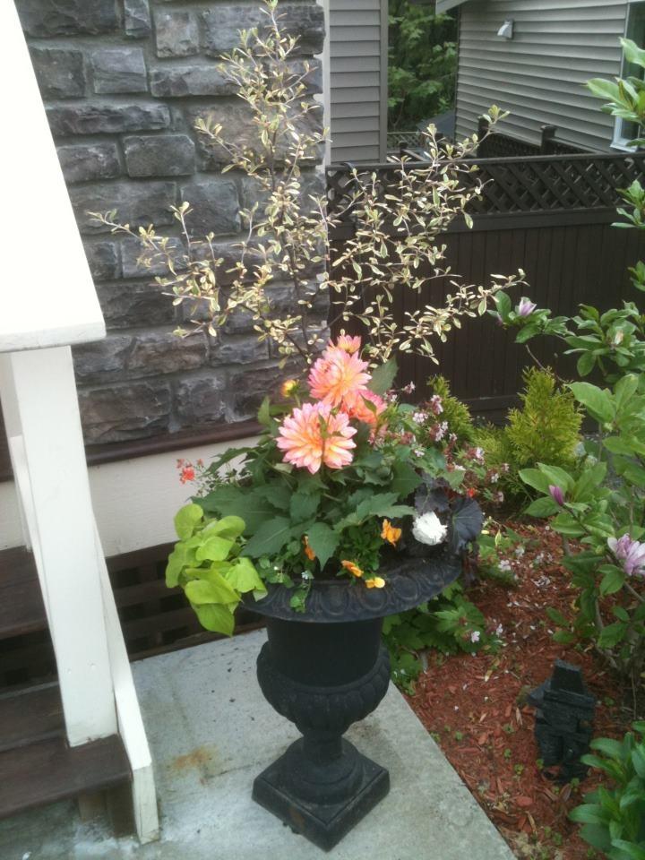 Garden Urn: Gardens Ideas, Gardens Urn,  Flowerpot