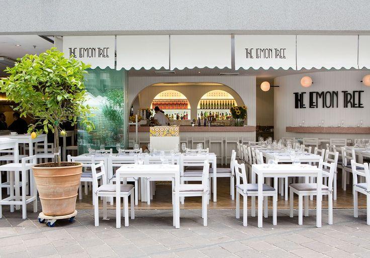 The Lemon Tree Italian Restaurant in Australia Square is opened by duo behind Pelicano Double Bay - Broadsheet Sydney - Broadsheet