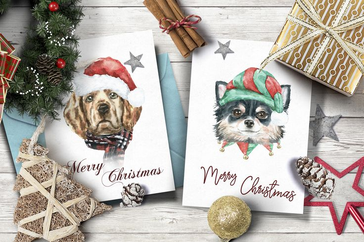 Christmas Character Creator by Catherine Wheel on @creativemarket . Hand-painted Christmas watercolor collection.Watercolor animal illustration set. Dogs & cats portrait clipart. Winter graphic set,animals, snowflakes,winter frost backgrounds.Dogs poster clipart,cats in winter holiday clothes, hats,scarves,pre-made characters, isolated elements with transparent background.